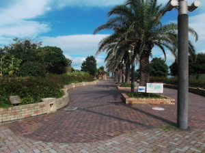 Umikaze Park  Sea breeze park