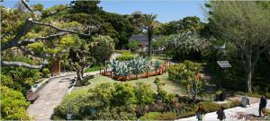 Enoshima garden