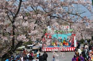 満開の桜とさくら祭り