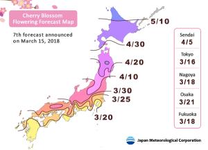 cherry-blossom-forecast-japan-2018-1